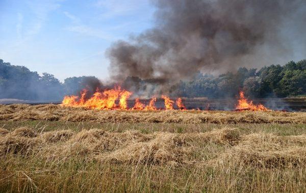 UPOZORNENIE   Vyhlásený čas zvýšeného nebezpečenstva vzniku požiarov v okr. MA