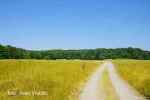 Lúky a poľné cesty